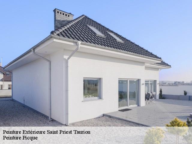 Entreprise De Peinture Extérieure à Saint Priest Taurion Tél 05 64